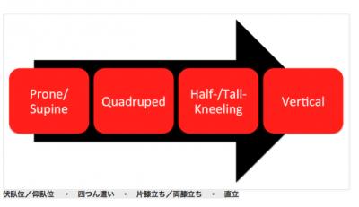 トレーニングの発展イメージ