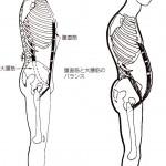 腰痛の原因その1