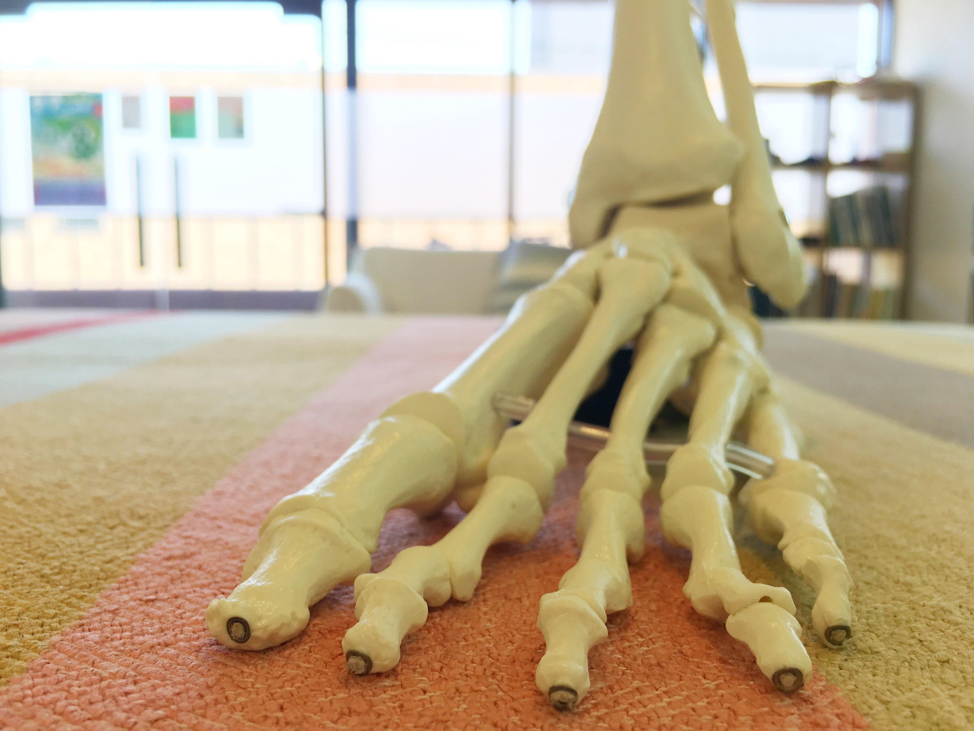 みんな骨盤の歪みは気にするけれど、意外と足については無関心だったりする
